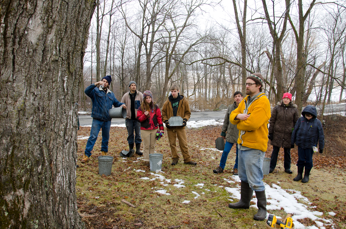 Creek Iverson, manager of the Brook Farm Project, New Paltz NY, gives an in depth explanation to the group of volunteers about the process of making maple syrup beginning with how to know a tree is a sugar maple, how large a tree must be to be tapped, and how much maple syrup each tree will make. Iverson explains that it takes approximately 10 gallons of sap to get just 1 quart of maple syrup. Photo by Dawna M. Cservak.