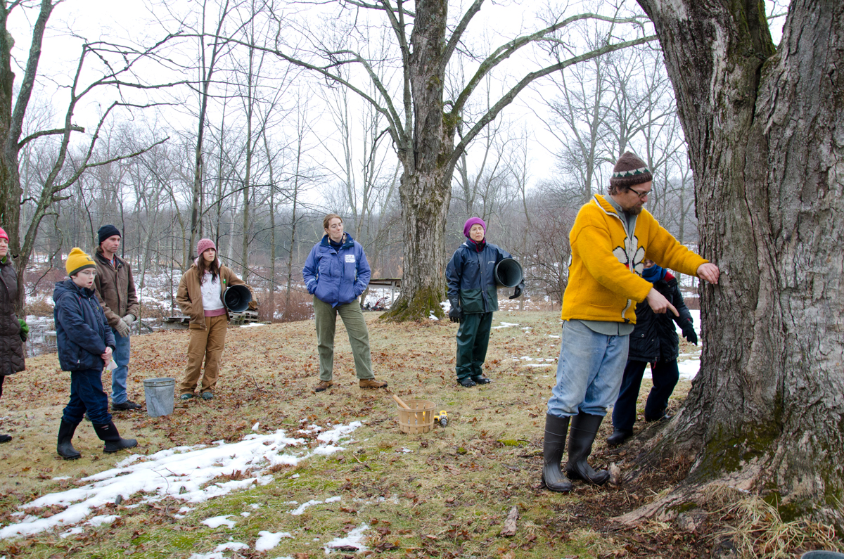 Creek Iverson, manager of the Brook Farm Project, New Paltz, NY, explains to a group of people volunteering for a day of maple sugaring prep work, that in order to tap a sugar maple tree in the best spot possible, one should find a spot where the tree is the warmest, typically where the sun hits the tree the most, which would be located on the south side of the tree's trunk. Photo by Dawna M. Cservak.