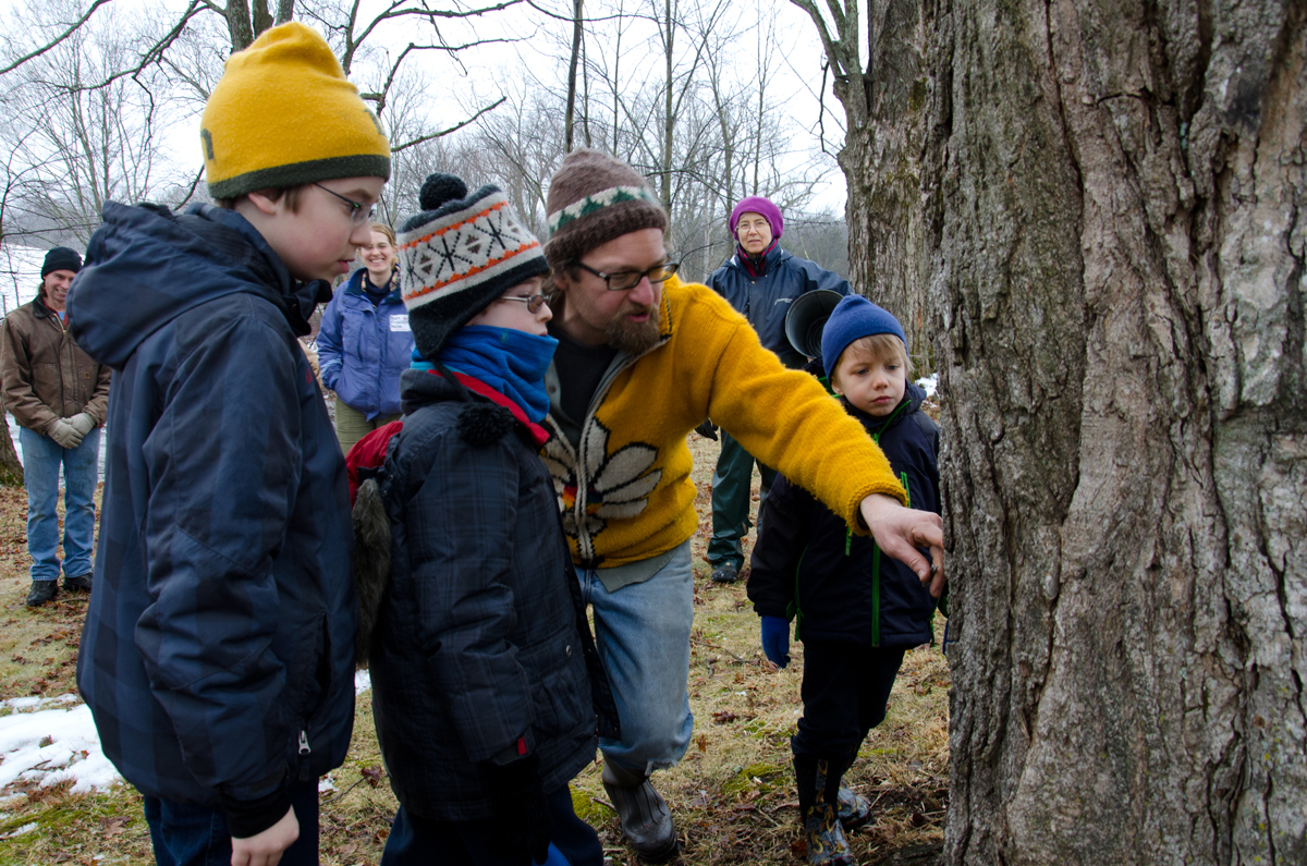 Creek Iverson, manager of the Brook Farm Project, New Paltz, NY, shows three young volunteers: Seamus Schwartz (left), Lucas Lemos (second from left) and Ben Gilman (right) how to choose the perfect spot to tap the sugar maple tree based on location of the sun and leaving enough room to allow the bucket to hang below the spout. Photo by Dawna M. Cservak.