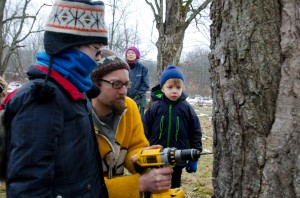 Ben Gilman, a young volunteer at the Maple Sugaring Prep Work party and potluck (right), looks on with serious determination as he watches Creek Iverson, manager of the Brook Farm Project, New Paltz, NY, give a demonstration on drilling the perfect place to position the spout for tapping the sugar maple tree for sap. Photo by Dawna M. Cservak.