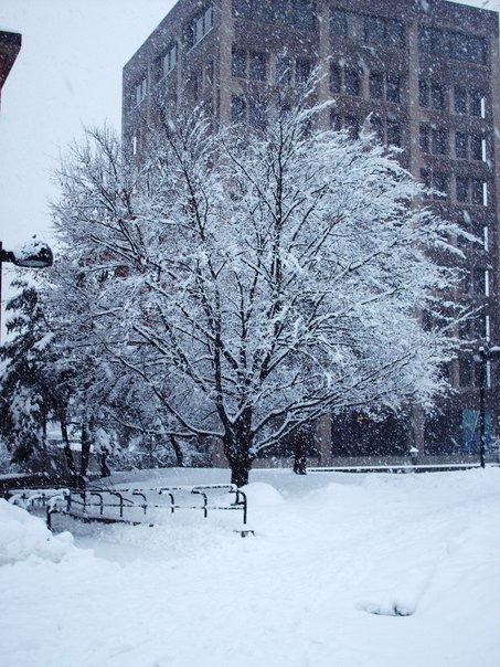 Snowageddon