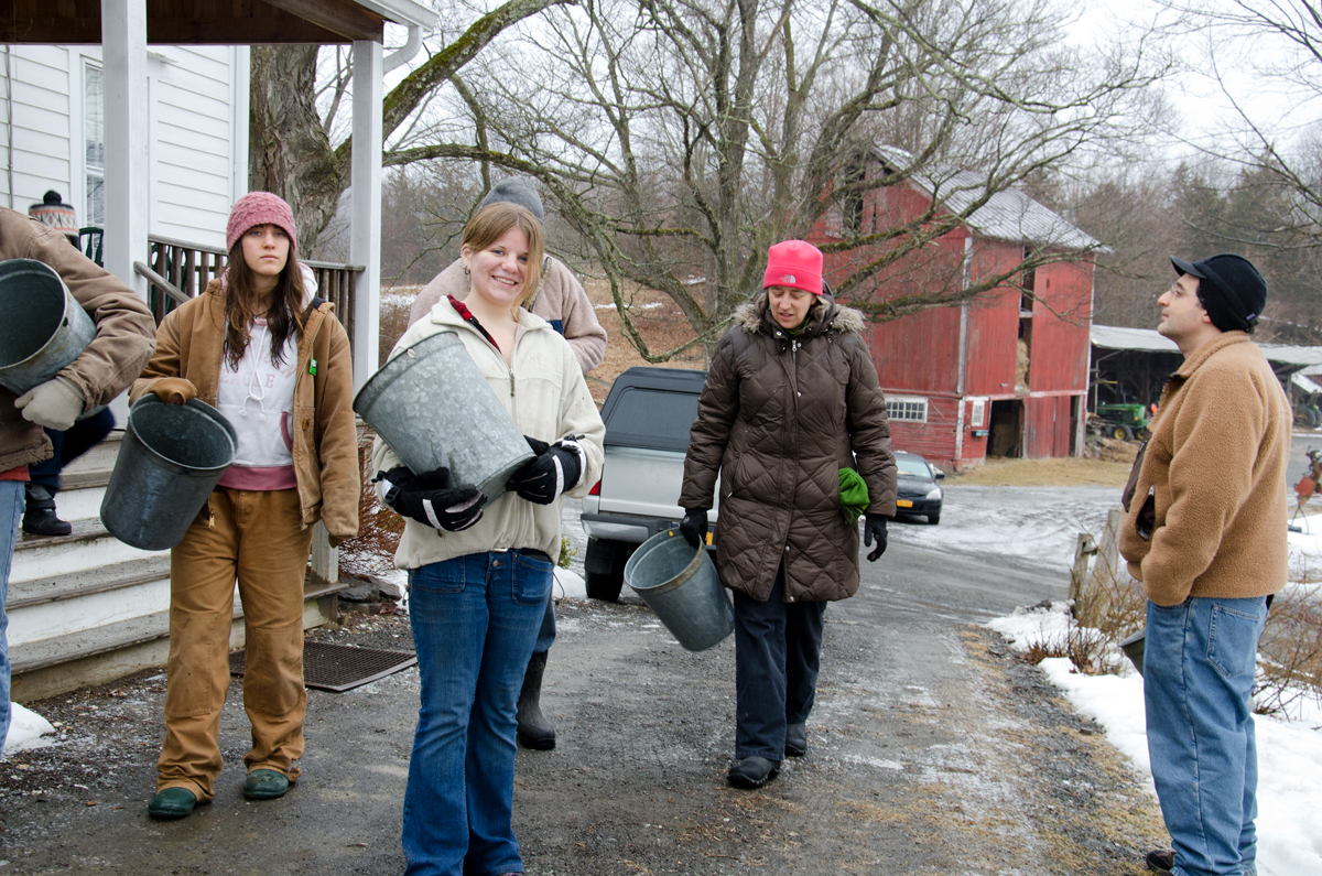 Volunteer April Alfieri of Guilderland, NY (second from left) leads the way as the group of volunteers move toward the lawn to witness a demonstration being given about tapping a sugar maple tree. Photo by Dawna M. Cservak.