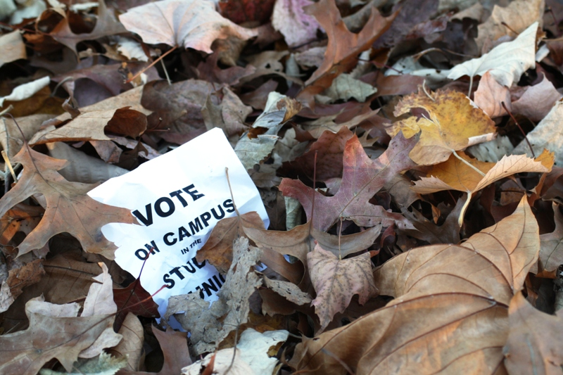 Student Poll Shows Apathy Among Voters