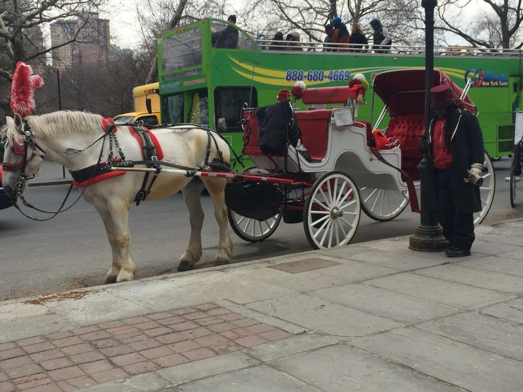 A Halt to The NYC Horse Carriage Industry: Don't Be Taken For a Ride