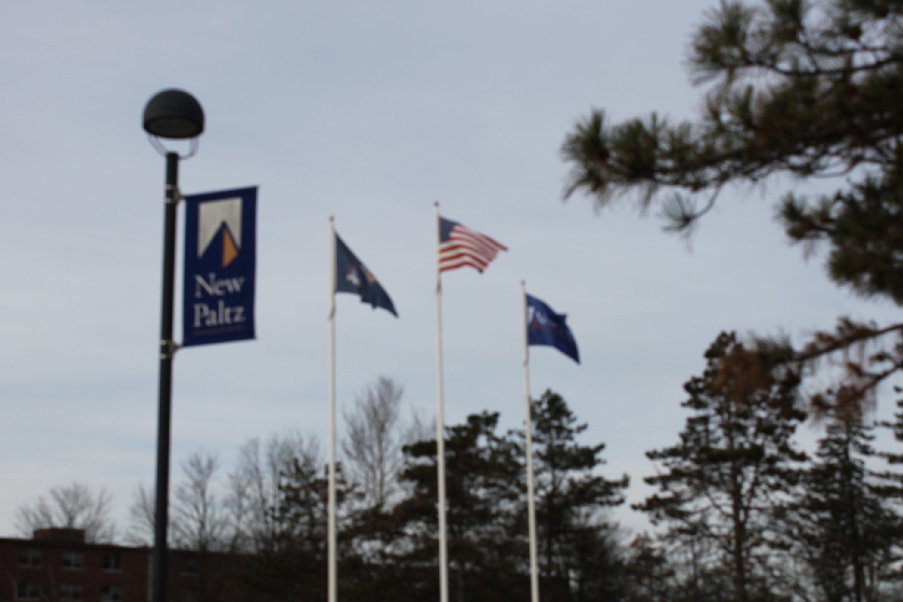Which SUNY New Paltz Icon Are You?