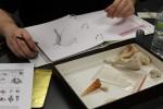 Third-year geology major Brennan DuBois, 21, drawing a fossil. Photo by Khynna Kuprian.