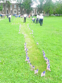 Flags lining the Old Main Quad. Photo by Justin Sarjeant.