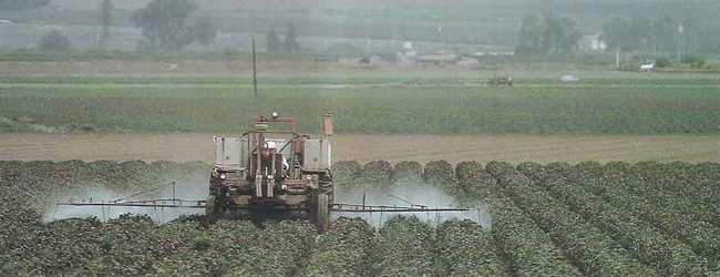 Lawmakers Seek to Limit Pesticide Use