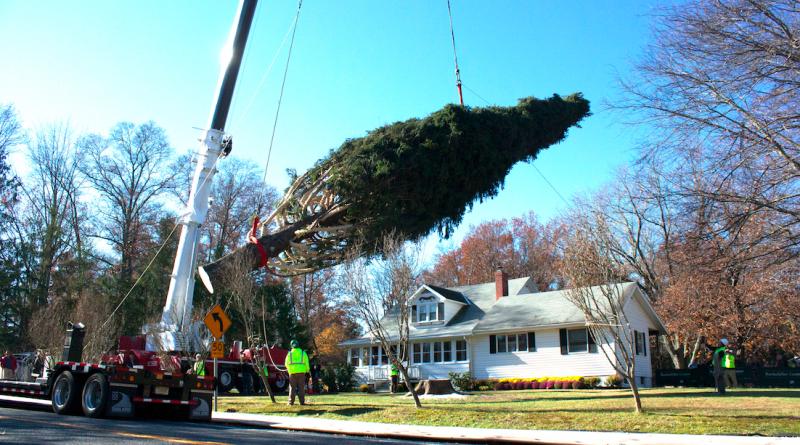 Gardiner Couple Donates Tree to Rockefeller Center