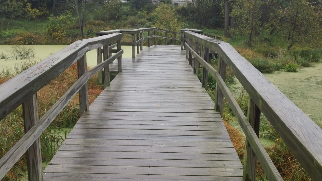 Bridge at Nyquist Preserve. Photo by Roger Gilson.