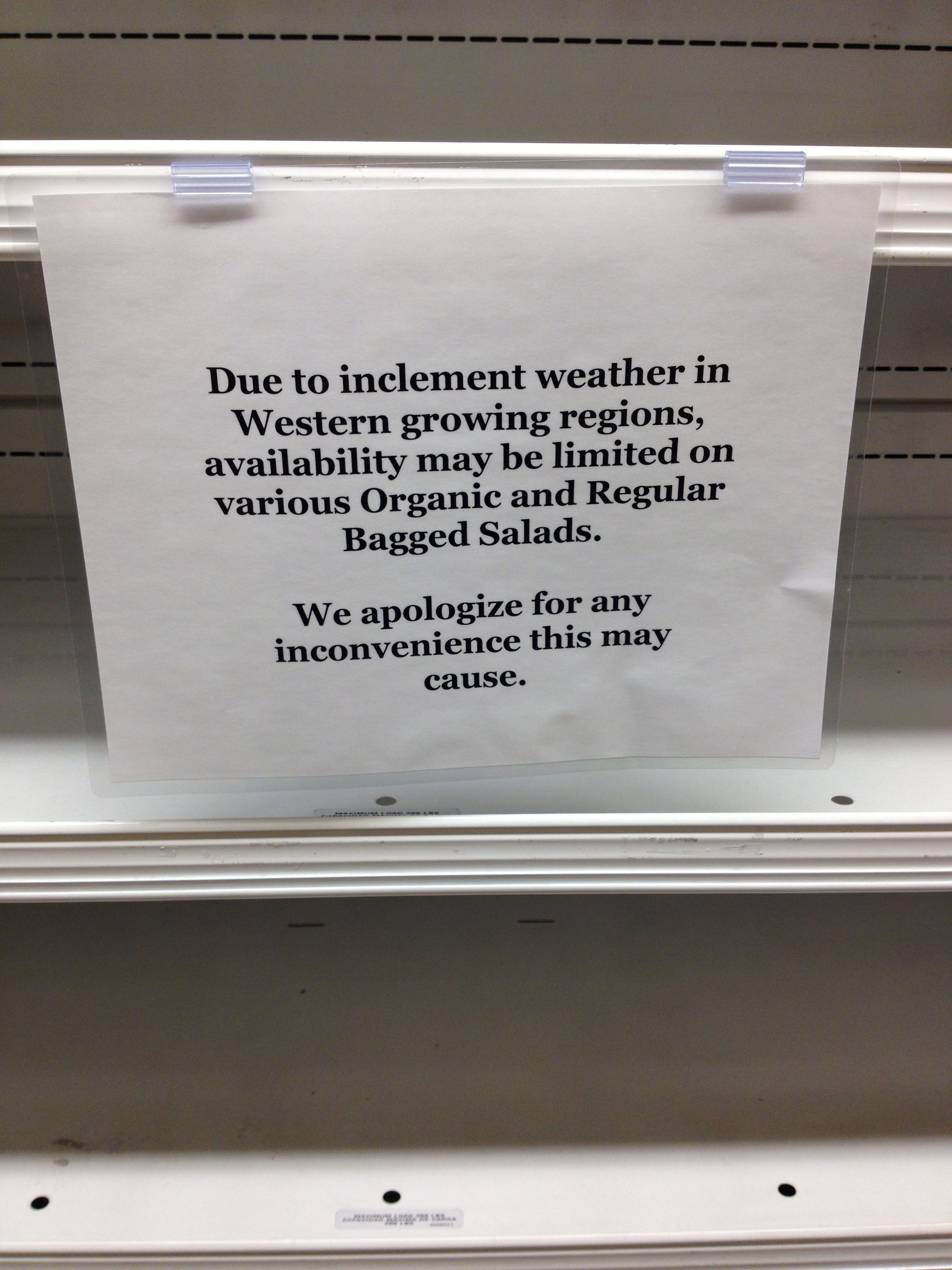 On Thursday, salads were of limited quantity at Stop & Shop. Photo by Chelsea Hirsch.