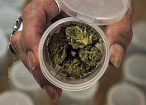 A bill was introduced in the Senate and Assembly that would allow patients with debilitating or life-threatening conditions to be treated with medical marijuana. Photo by AP.